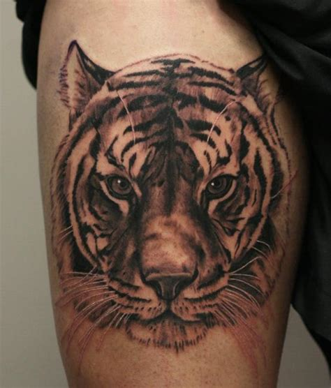 tiger thigh tattoo designs tiger on belly by ab martinez