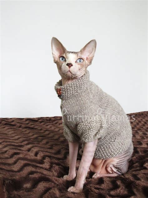 knitting pattern cat clothes 13 adorable outfits and accessories for your cat because