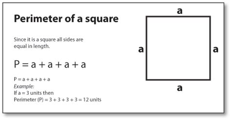 how to calculate perimeter finding perimeter of shapes find perimeter