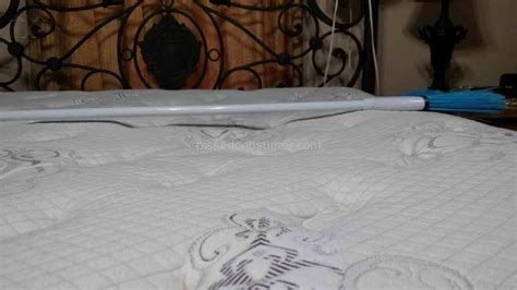 simmons bedding company simmons beautyrest copacabana plush firm pillowtop mattress review