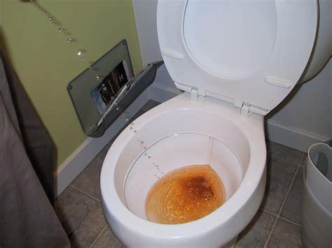 Spaghetti O smelling urine   Serato.com