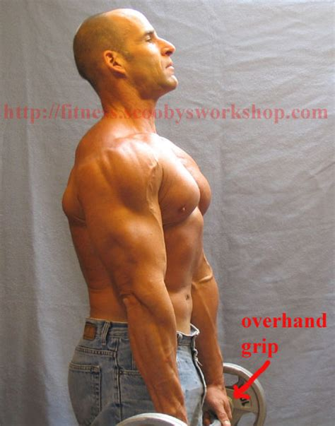 biceps exercises scooby s home workouts