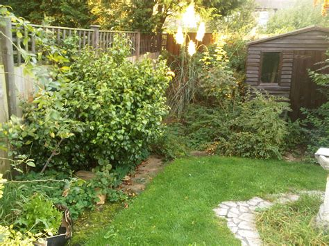 cottage garden design uk garden design walthamstow a cottage garden