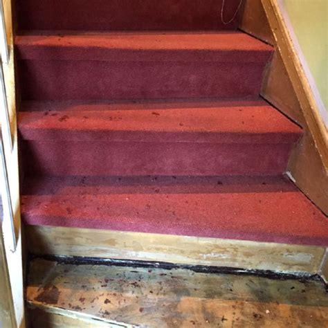 Treppen Teppich Entfernen by Treppenrenovierung Vorher Nachher Nr 4 Parkett Remel In