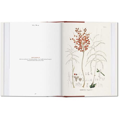 ko martius the book of il libro delle palme iep taschen libri it