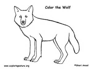 Girl Anime Wolves Colouring Pages sketch template