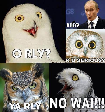 Who Owl Meme - owl memes gallery ebaum s world