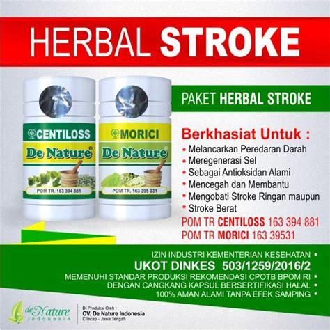 Obat Herbal Stroke obat herbal orang stroke
