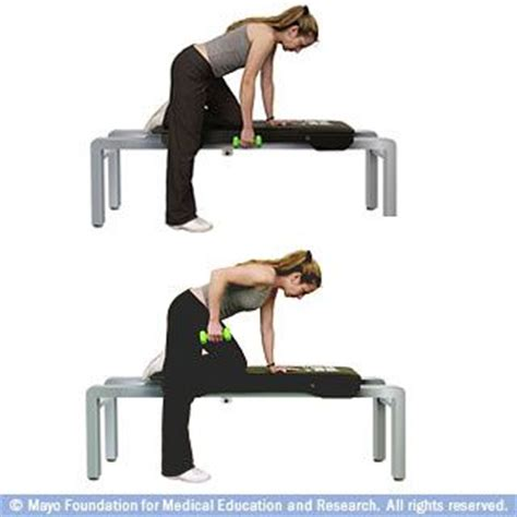 bent over row bench 17 best images about circuit exercises on pinterest