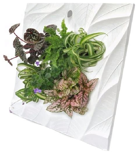 indoor wall planters edelwhite living wall planter contemporary indoor pots