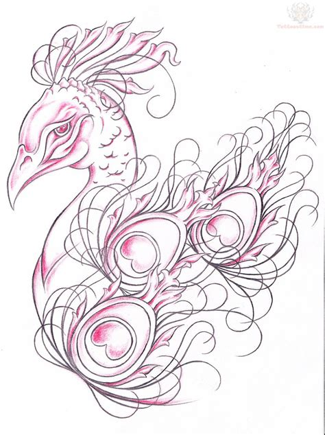 tattoo drawing design peacock images designs