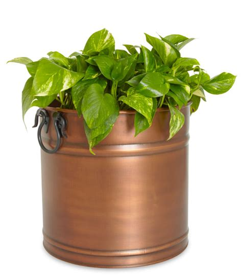 Copper Flower Planter by Garden And Patio Planters Modern Outdoor Planters