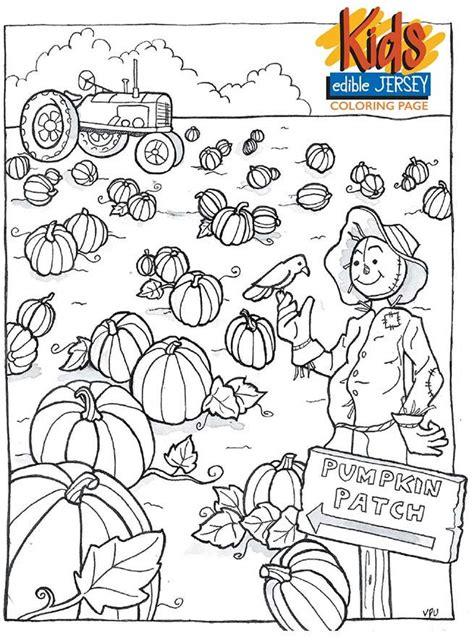 60 Best Harvest Images On Pinterest Drawings Coloring Pumpkin Patch Coloring Pages
