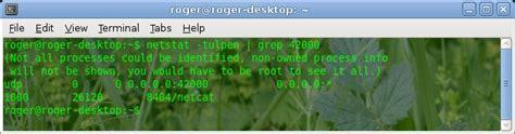 awk command with exles in unix linux techpursue netstat grep exles