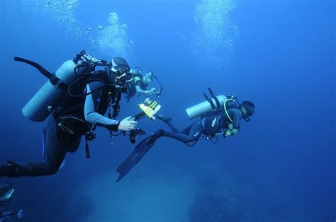 best places in the world to scuba dive top 10 best scuba diving places in the world story tourder s