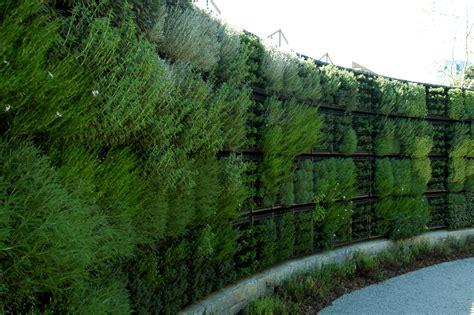 atlanta botanical garden edible garden green wall
