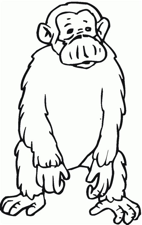 sad monkey coloring page free cartoon chimpanzee pictures download free clip art