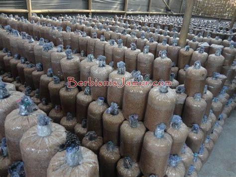 Oven Jamur Tiram galery jamur angkatan ke 40 berbisnis jamur