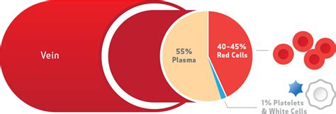 which blood component gives blood its color the facts about whole blood canadian blood services
