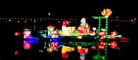 light festival near me light festival near me 100 images where to
