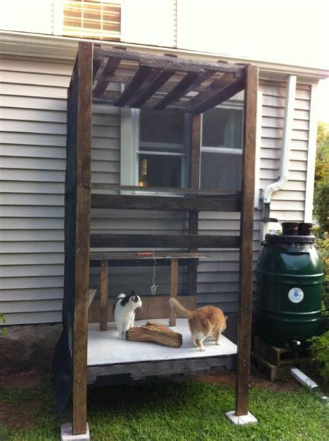 cat window box for sale 17 best ideas about outdoor cat enclosure on
