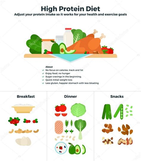 protein high high protein diet stock vector 169 mountainbrothers 108899914