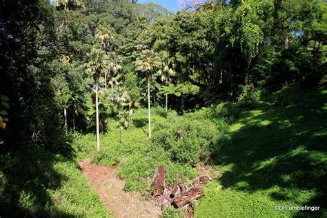 a tropical oasis wahiawa botanical garden oahu travelgumbo