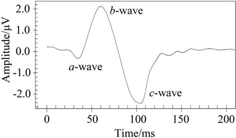 erg flash pattern a method and system to simulate human electrophysiological