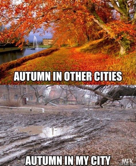 Autumn Meme - autumn meme