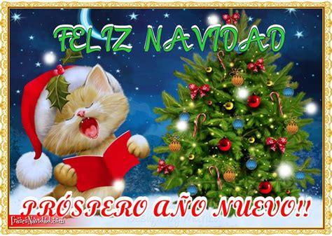 imagenes hermosas para desear feliz navidad hermosas im 225 genes de tiernos gatos para desear una feliz