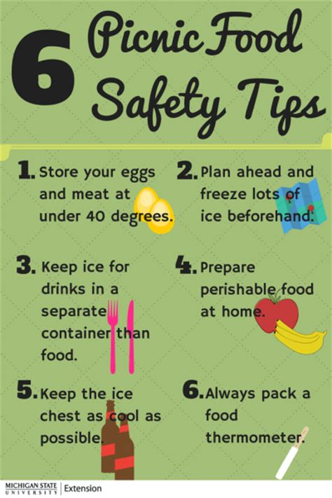 10 Safety Tips To Follow In Your Home by Six Tips To Keep Your Food Safe During Picnics And Cing