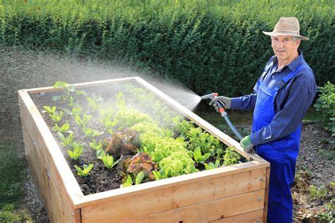 Garten Hochbeet Pflanzen by Hochbeet Bepflanzen Vorgehensweise Garten Mix