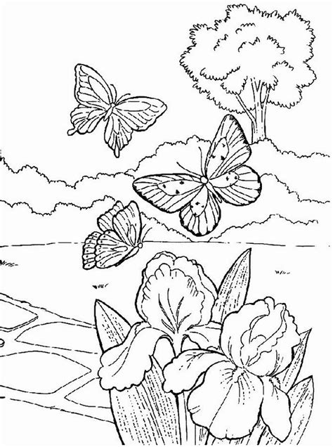 printable spring coloring pages for adults spring coloring pages for adults coloring home