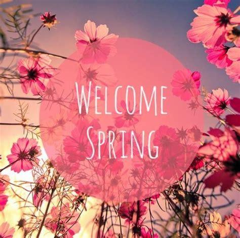 imagenes de flores we heart it 161 bienvenida primavera