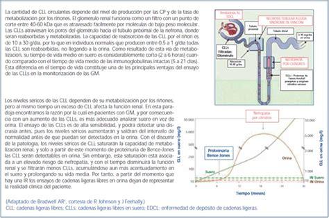 cadenas ligeras e insuficiencia renal valor del ensayo de las cadenas ligeras libres en suero