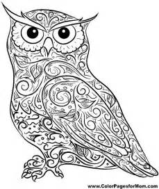 owl coloring pages for adults owls coloring pages