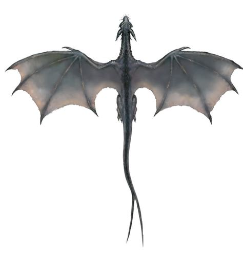 monster tattoo png image gray dragon overhead png dragons fandom