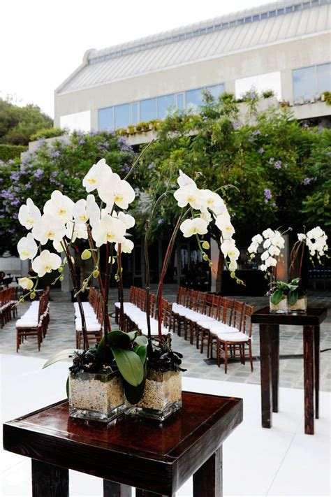 Phalaenopsis Orchid Centerpiece Planning Our 17 Best Images About Orchid Weddings On Ace