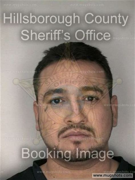 Hillsborough County Arrest Records Antonio Cuevas Mugshot Antonio Cuevas Arrest Hillsborough County Fl