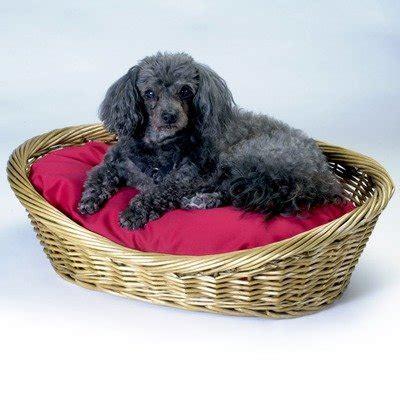 wicker dog bed snoozer wicker dog basket and bed medium navy my pet supplies
