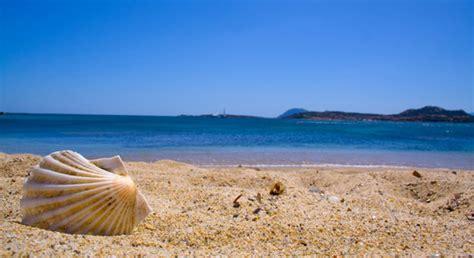 banco di sardegna alghero lavoro fisco e adempimenti tra mare incontri cus