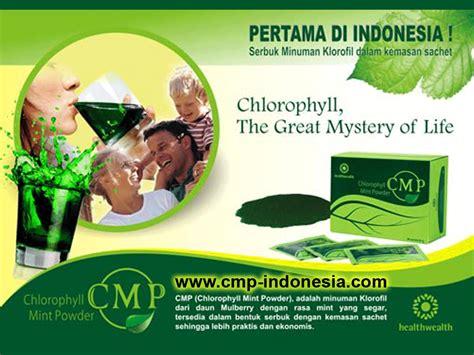 Chlorophyl Mint Powder Cmp txsaur s wardrobe cmp 3green frutablend mr pro