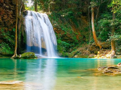 nature falls pool  turquoise green water rock coast
