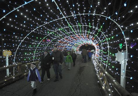 lehigh valley zoo light 7 y ways to get in the spirit this