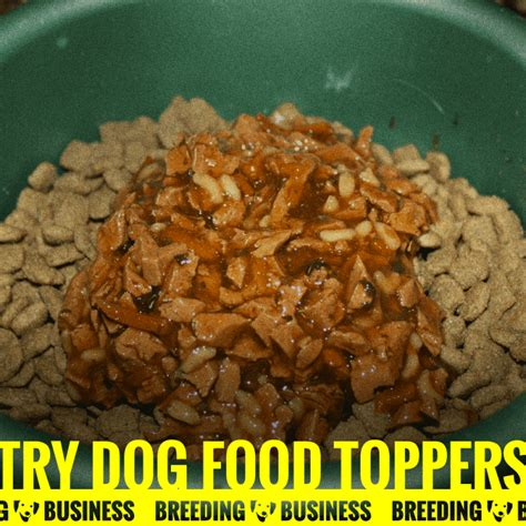 food toppers best food toppers buying guide business
