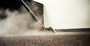 Steam It Carpet Cleaning Woods Waters Carpet Cleaning Inc Upholstery Rug And