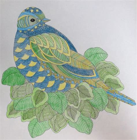 millie marottas animal kingdom 1849943532 bird in leafy surroundings from millie marotta s animal kingdom color book animal kingdom