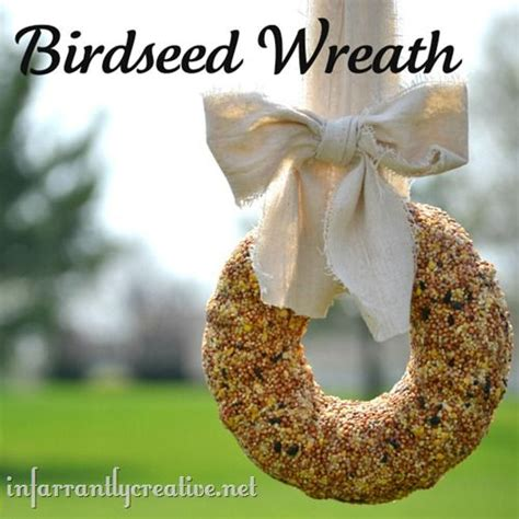 bird seed wreath infarrantly creative