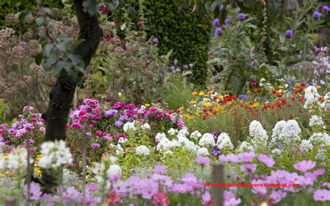 Pictures Flower Gardens Beautiful Collection Of Home Garden Wallpapers Free For Android Free