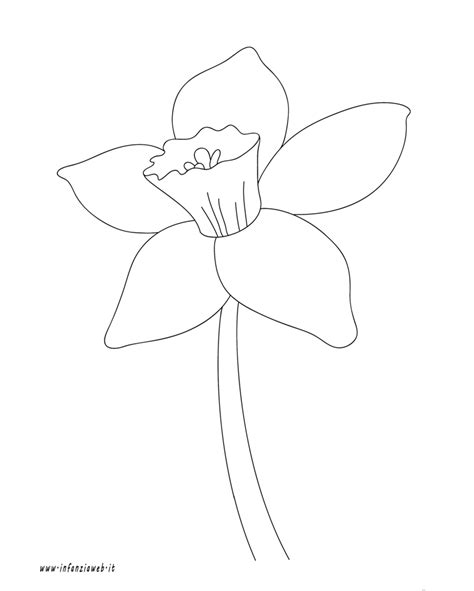 come colorare i fiori come disegnare un tulipano fiori idea immagine